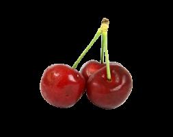 Branch Apple